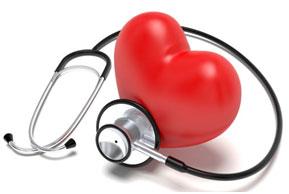 les-maladies-cardio-vasculaires